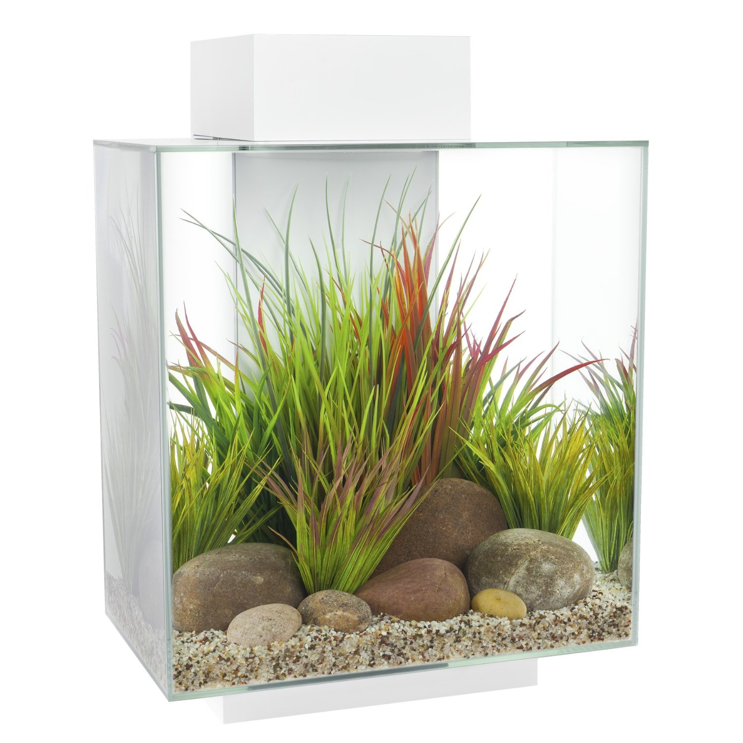 Nano aquarium nano aquaristik nanoaquarium kaufen shop for Acquari on line shop