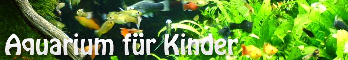aquarium-für-kinder
